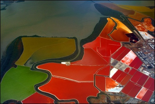 ryanpanos:  Multicolored Salt Ponds at San Francisco Bay If you ever fly over San Francisco Bay, be sure to peer out of the window to catch a glimpse of one of the world's most incredibly coloured landscapes - the salt evaporation ponds operated by Cargill, Inc. Salt evaporation ponds are shallow artificial ponds designed to produce salts from sea water or other brines. The seawater or brine is fed into large ponds and water is drawn out through natural evaporation which allows the salt to be subsequently harvested. During the five years it takes for the bay water to mature into salt brine, it is moved from one evaporation pond to another. In the final stages, when the brine is fully saturated, it is pumped to the crystalizer where a bed of salt 5 to 8 inches thick is ready for harvest.