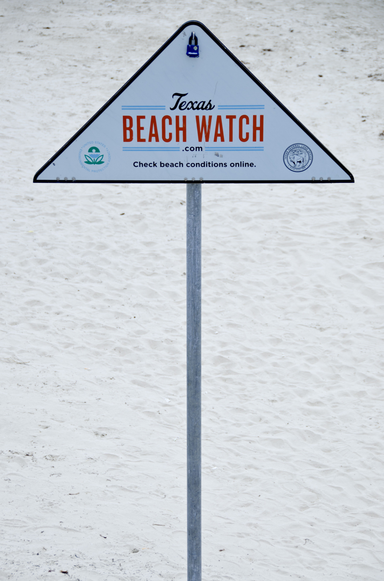 Beach watch!