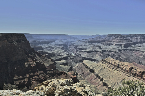 Photographer: Steven WilliamsLocation: Grand Canyon, AZ (South Rim)www.steveslefteye.comwww.facebook.com/steveslefteyewww.facebook.com/isstevestillalive
