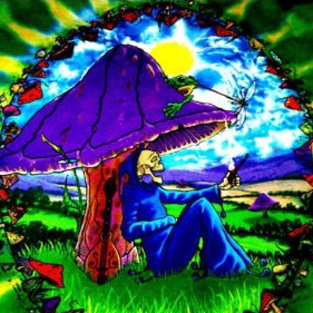 #trippy #smoking #stoner #bum #booms #shrooms  (Taken with Instagram)