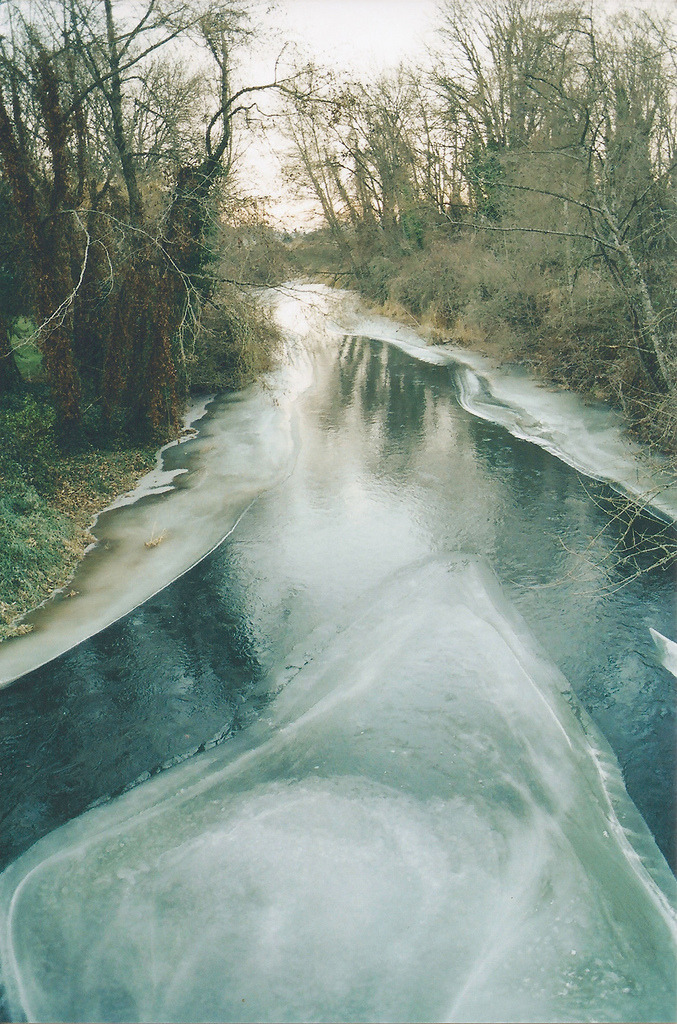 meowrica:  Ice Fork on Butte Creek (by tre.dreams)