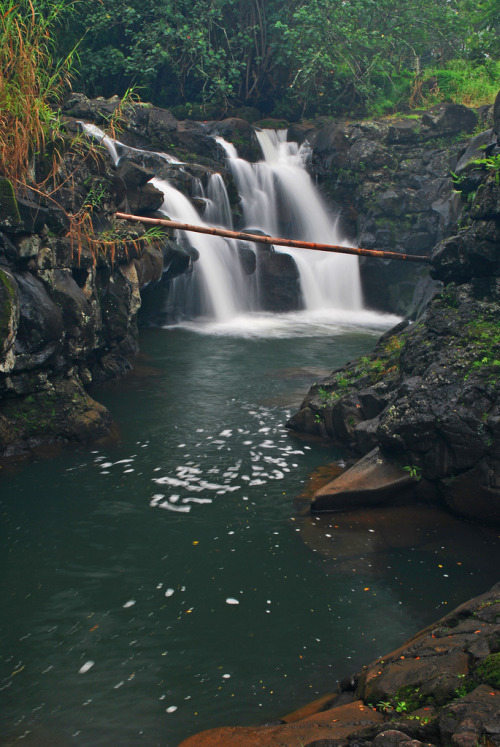 uoa:  Ho'opi'i Falls swimming area (by junglejims photos)