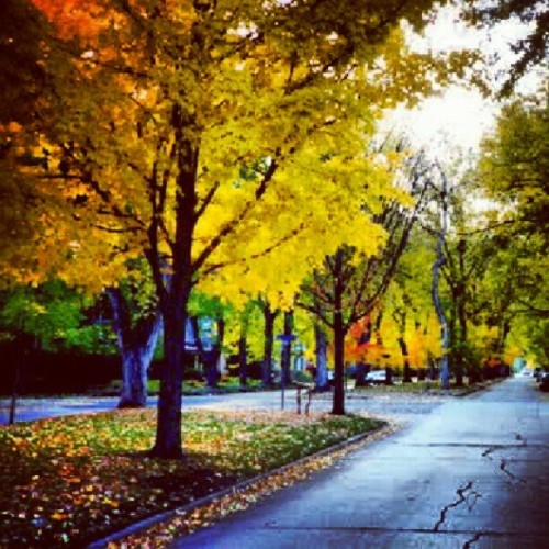 #boulder #fall #maxwell $xspindoc (Taken with Instagram at boulder)