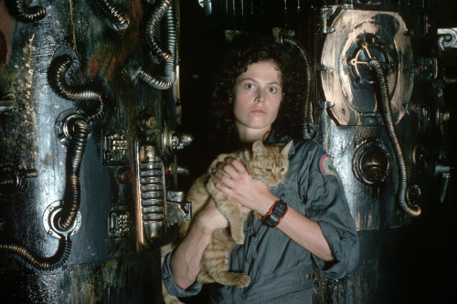 suicideblonde:  Sigourney Weaver in Alien (1979)