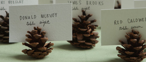mrs-mcdaniel:  Project Wedding: Pinecone Seating Cards