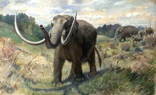 lostbeasts:  Mastodon, by Charles R. Knight