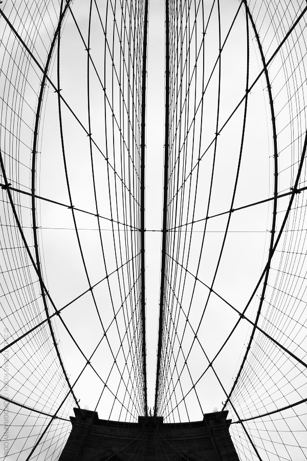 tobias koch | steel wires & metallic lines.