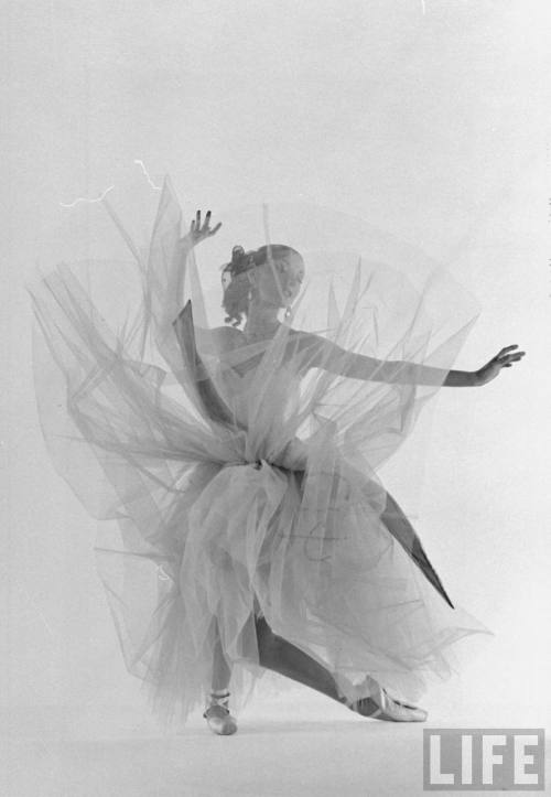 "theniftyfifties:  New York Ballet dancer Tanaquil LeClercq performing ""La Valse"" at Gjon Mili's studio, 1951. Photo by Gjon Mili."