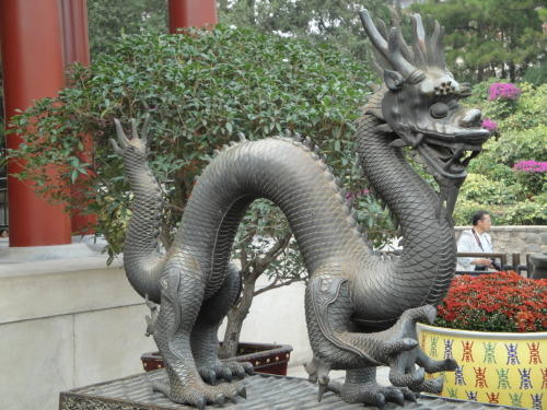 Enter the Dragon…metal sculpture…Beijing, China Source: (Zacapatista 2009)
