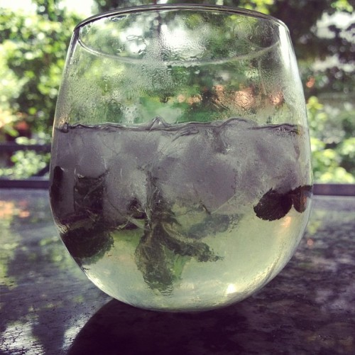 New summer jam. Vodka, champagne, lime, and mint.  (Taken with Instagram)