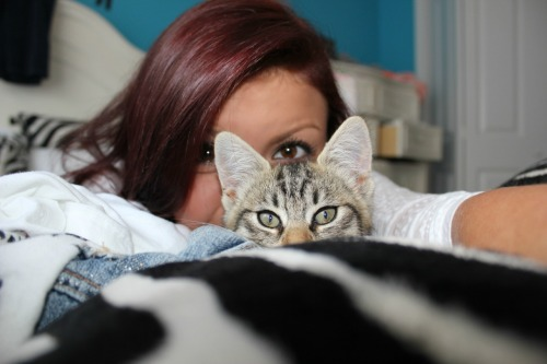 tig-rs:  veg4n:  My hair and my kitten. IT'S SO RED!  Omfg this is too cute