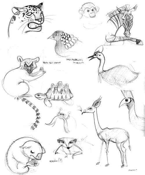 Drawings from the Los Angeles Zoo from May 30th. Must go again!