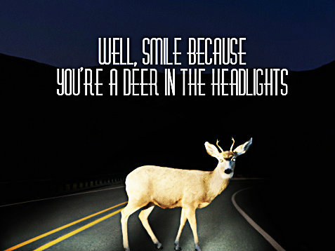 Deer In the Headlights by Owl City