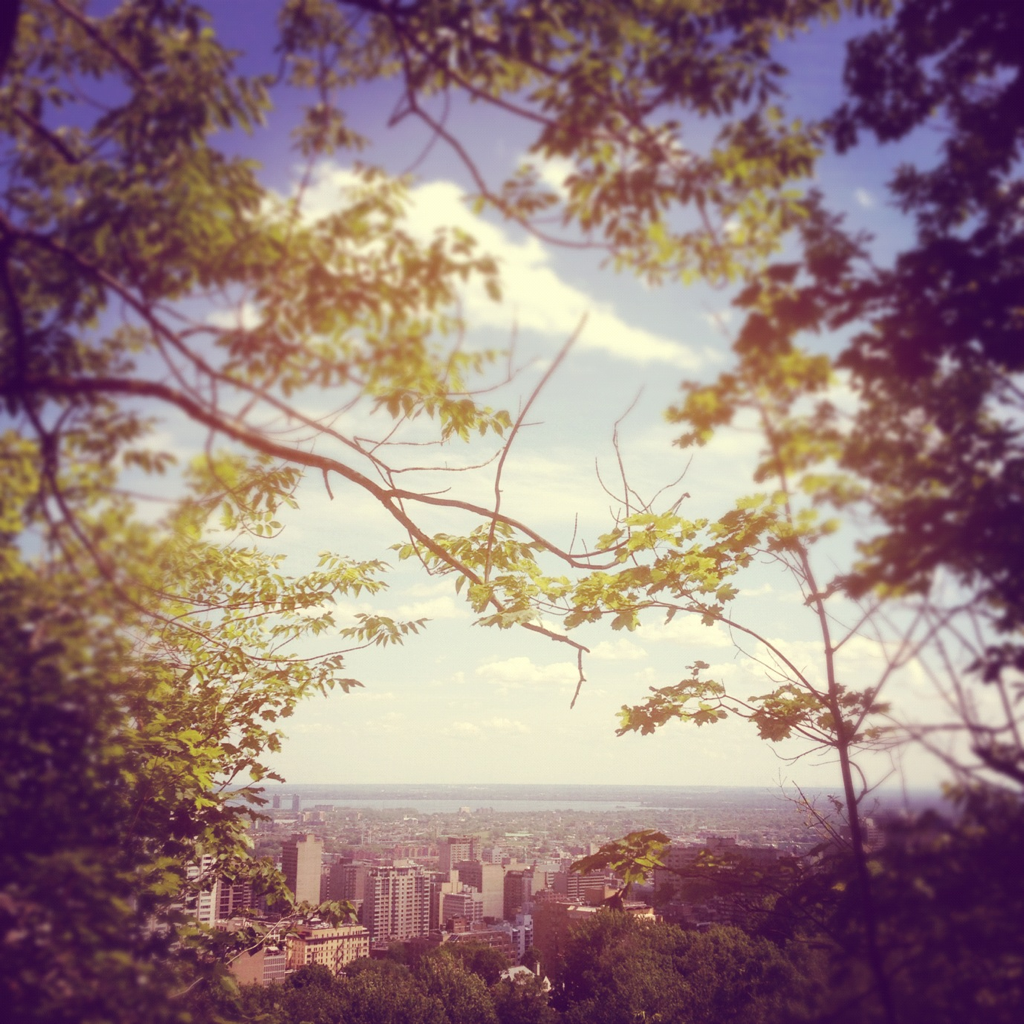 Sunny Montreal, as seen from the belvedere. Copyright Conteska photography.