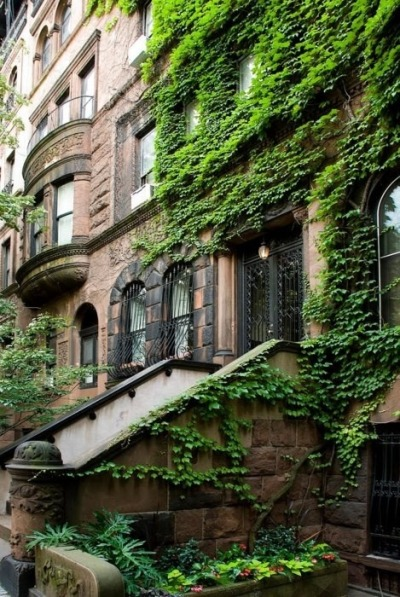 bluepueblo:  Ivy Entrance, Brooklyn, New York photo via thegifts