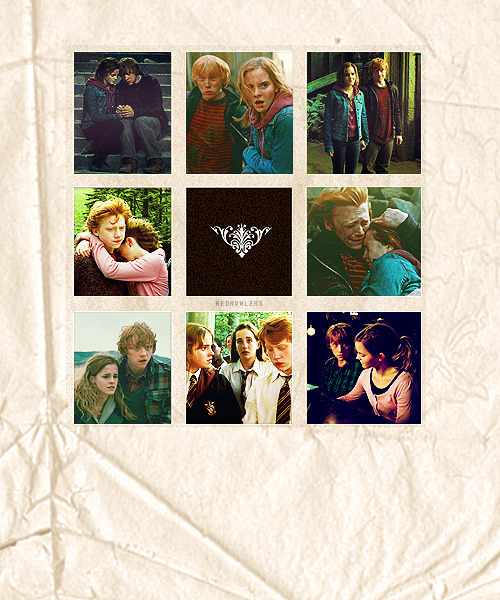 THE MAGIC BEGINS - A Harry Potter Challenge  » Day Twelve: Favourite canon ship/couple - Ron Weasley x Hermione Granger