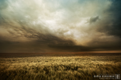 Landscape photography: Coming Storm by David Herreman Coming Storm at Lamontzée in Belgium.