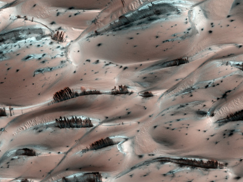 kaltspiegel:  Sand dunes with frozen carbon dioxide on Marsshiny *-*