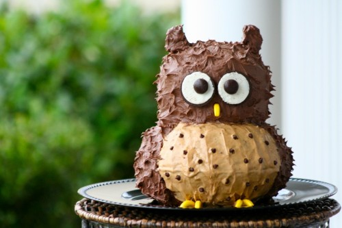 adorable owl cake.