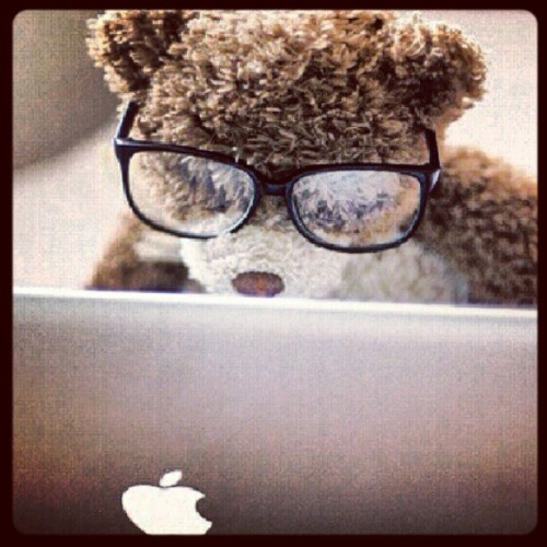 A bear with PhD… #CutePicture #PhD #Apple #Bear (Tirada com o Instagram)