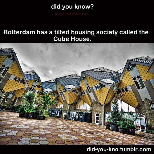did-you-kno:  Architect Piet Blom tipped a conventional house forty-five degrees and rested it upon a hexagon-shaped pole so that three sides face down and the other three face the sky. Each of the cube houses accommodates three floors: a living space including a kitchen, study and bathroom, the middle floor houses bedrooms and the top is the pyramid room that can act like an attic or viewing deck. Source  Wish I would of saw this trippy shit in Rotterdam!