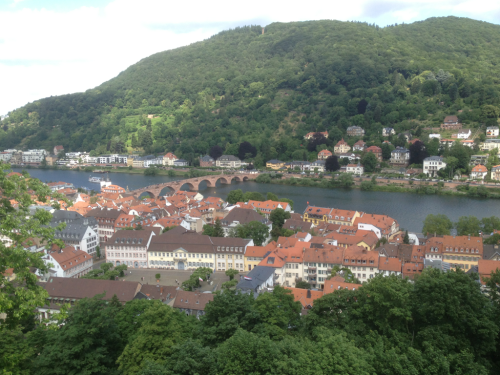 Looking down on Heidelberg from the castle