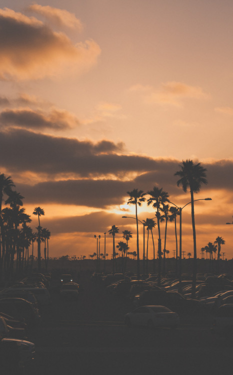 whiskeyblackleather-diamonds:  Sunset at Newport