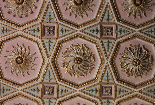 a-l-ancien-regime:  Detail: The Drawing Room Ceiling ~ Osterley Park House The ceiling plasterwork in the drawing room is thought to have been designed by William Chambers in the late 1750s. The design is of marigolds which is used throughout the house as it was the emblem of Child's bank