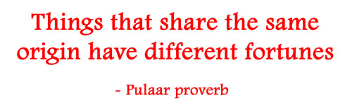 Things that share the same origin have different fortunes. - Pulaar proverb
