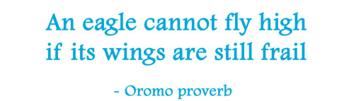 An eagle cannot fly high if its wings are still frail. - Oromo proverb