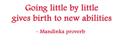 Going little by little gives birth to new abilities. - Mandinka proverb