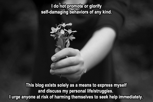 trying-for-tiny:   fleshscars:  I thought I'd make a disclaimer that everyone is free to reblog. I wanted one that would be neat and not so hard on the eyes with large, intense font or watermarks. Let Tumblr staff and others know that your blog is not a threatening or dangerous environment that encourages/condones mental illnesses, self-harm or anything of the sort.  i reblog this every couple of hours so its always on my page