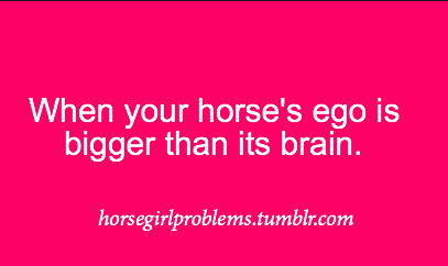horsegirlproblems:  thanks for the submission! ammy-elizabethh