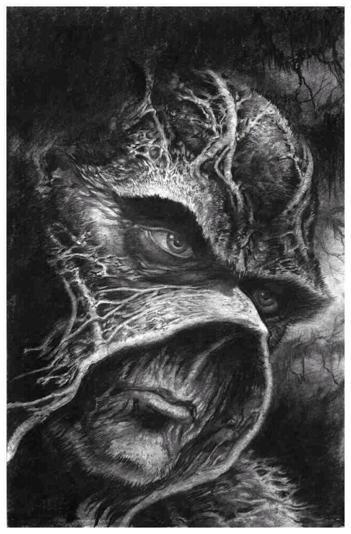 Swamp Thing // John Totleben