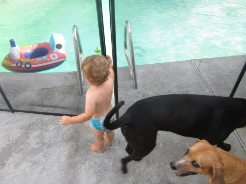 Hanging out by the pool with his buddies