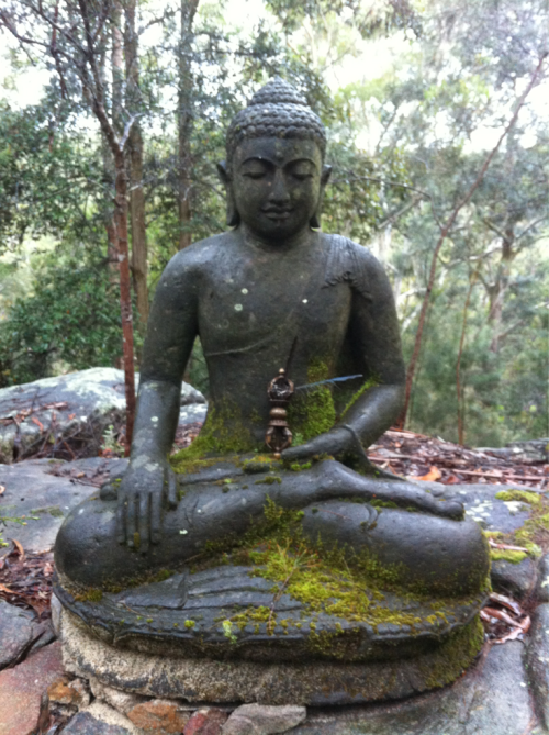 doublevajra:  Akshobya Buddha in the Australian bush