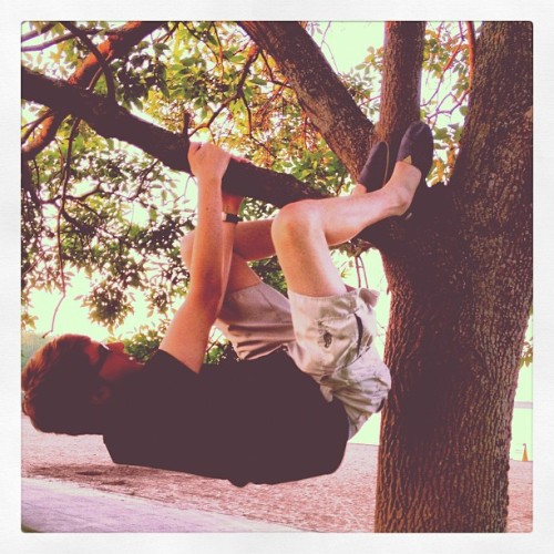 "fillingthevoidwithyou:  ""We just came here to climb this tree"" #tree #beach #transformers (Taken with Instagram at Oneida Shores Park)"