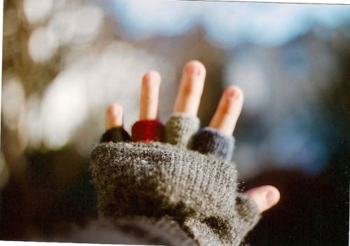 arche:  winter. by transmission- on Flickr.
