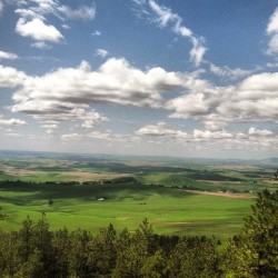 The Palouse from Paradise Ridge today. #nature #idaho #landscape (Taken with Instagram)