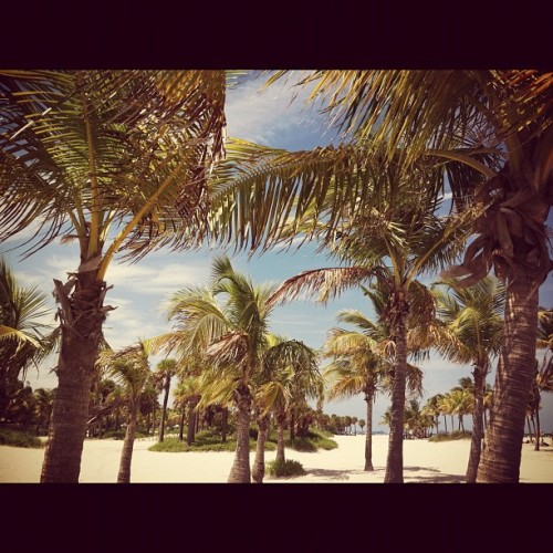 Key Biscayne was beautiful today. (Taken with Instagram)