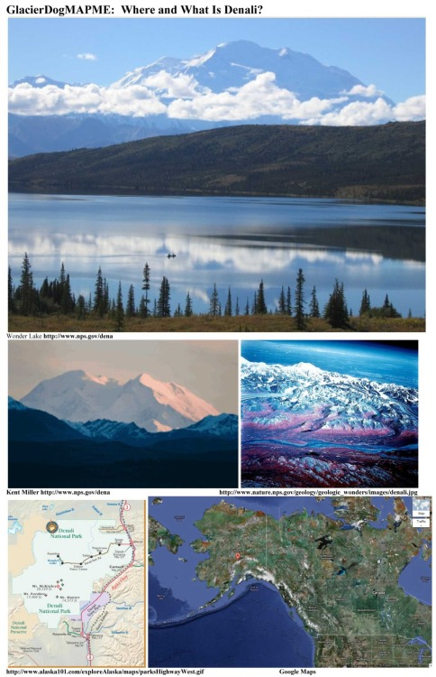 "GlacierDogMAPME:  Where and What Is Denali? * Denali, also called Mount McKinley, is North America's tallest peak at 20,320 feet and is located in Alaska about 150 mi NNW of Anchorage.  ""Measured from the 2,000-foot lowlands to its snowy summit at 20,320 feet, the mountain's vertical relief of 18,000 feet is greater than that of Mount Everest.""  http://www.nps.gov/dena/ * While temperatures at Denali's summit are severe even during the summer, winds can gust to over 150 mph and the winter temps at an elevation of just 14,500 feet can dive to colder than -95°F!  Permanent snowfields cover more than 50% of the mountain, feeding its many glaciers.  Denali's granite and slate core is covered by ice that in some areas is hundreds of feet thick. * ""Denali"", meaning the ""High One"" in native Athabascan language, crowns in the Alaska Range in a huge national park.  The park and the mountain were first named for President William McKinley, but later renamed Denali National Park and Preserve.  The mountain now goes by either Denali or Mount McKinley.   * Denali Park is a largely unspoiled wilderness.  In addition to viewing the mountain, visitors can spend the incredibly long summer days taking wildlife tours and are able to see moose, bear, Dall sheep, goats, and eagles.  http://www.nps.gov/dena/ and http://www.nature.nps.gov/geology/parks/dena/  GlacierDog's Website: http://www.glacierdogpublishing.com/"