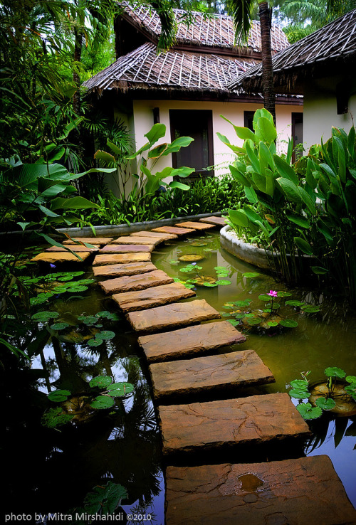Stone Path, Phuket, Thailand photo by mitra