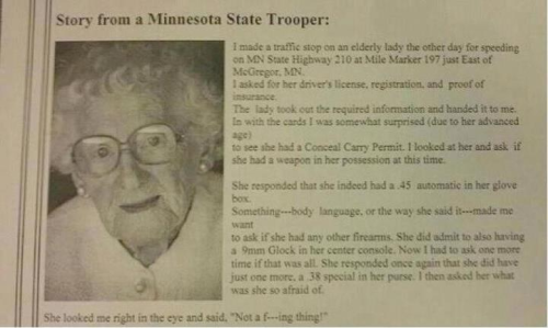 MN State Trooper pulled over this little old lady and she had 3 guns in her car!