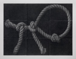 David Musgrave, Rope animal, 2008, Graphite on paper, 19 5/8 X 25 1/4 inches, (50 X 64 cm)