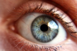 I'm a little bit obsessed with taking photos of eyes..