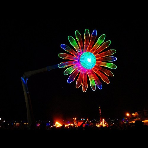 foreverintrance:  michaelsalas26:  Day three was a success!! EDC you will be missed till next year. #edc #flower #rave #lights (Taken with Instagram)  What an amazing weekend