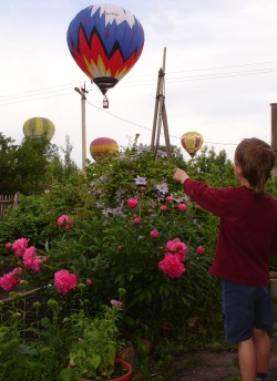 child looks at the balloons  XVII International Meeting of balloonists in Velikie Luki