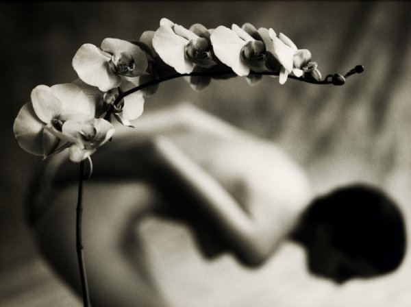 by Mark Arbeit
