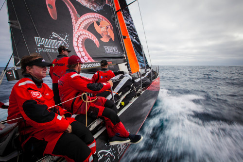 pumasailing:  Settling back into North Atlantic life on the way to Lorient after a wild start to Leg 8.