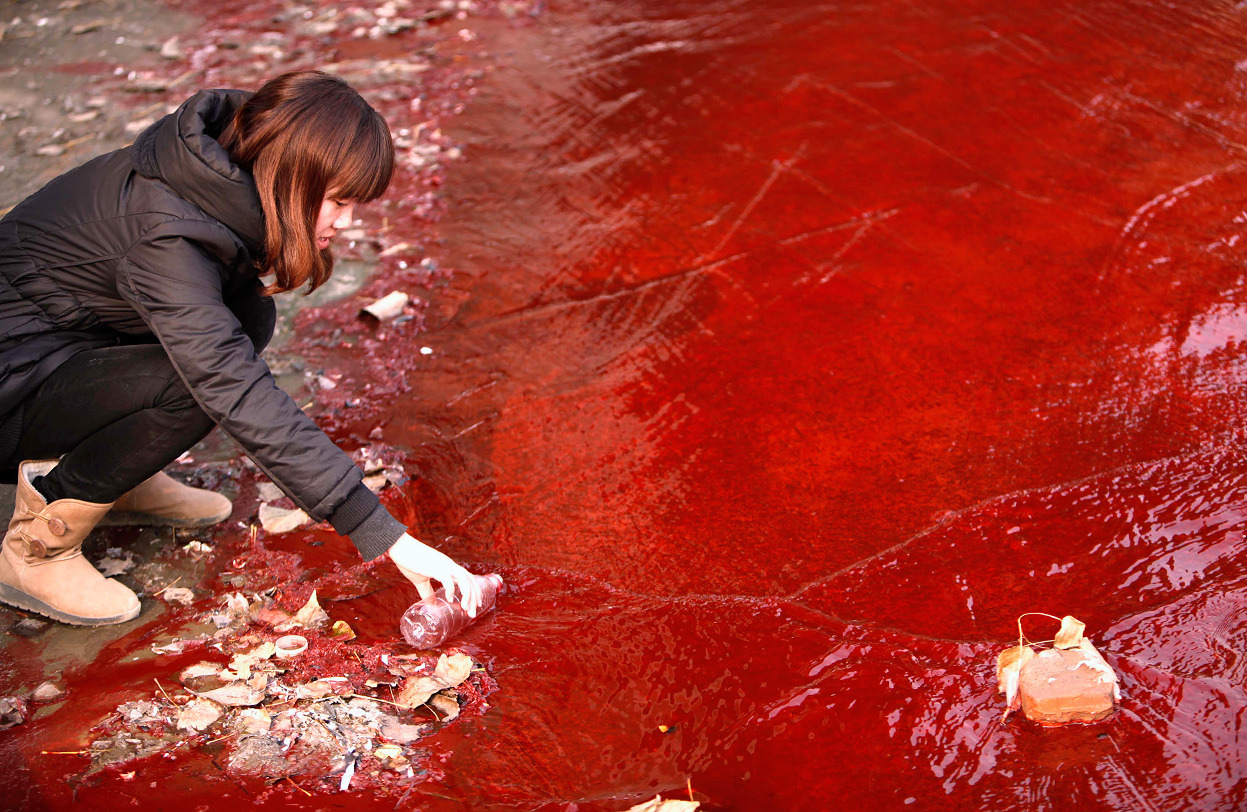 Polluted river in China turns blood red after two plants illegally dumped chemicals.